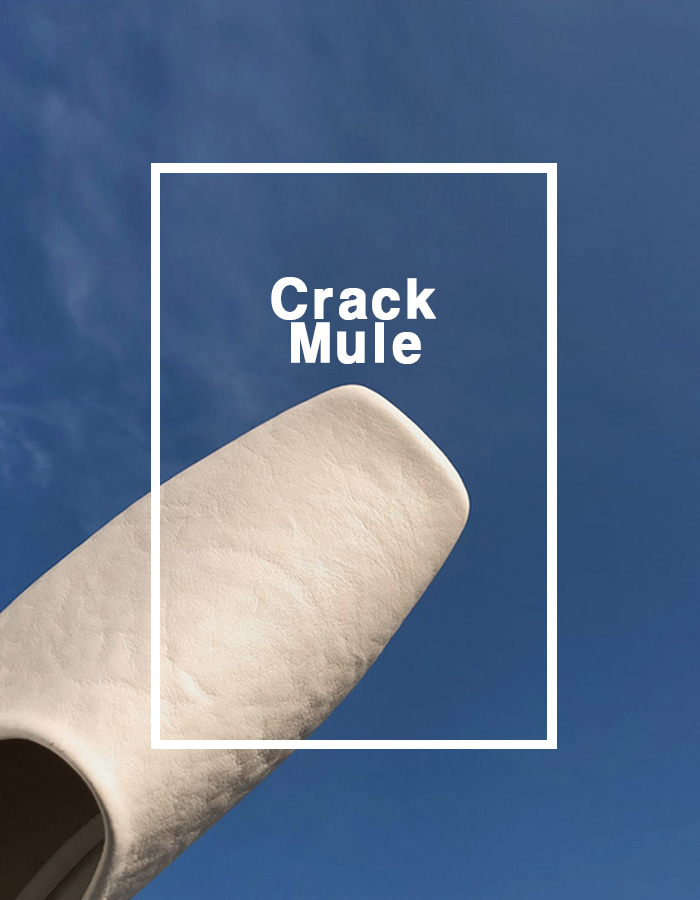 CRACK MULE (2 COLOR)