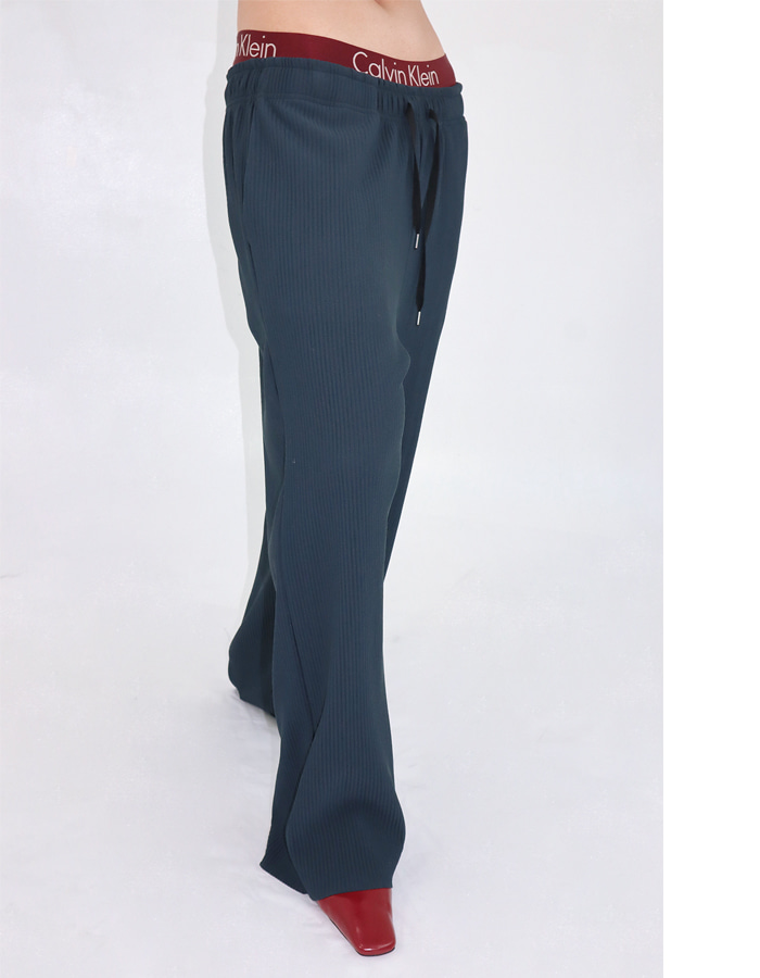 Unisex cozy pleats pants (2 color)